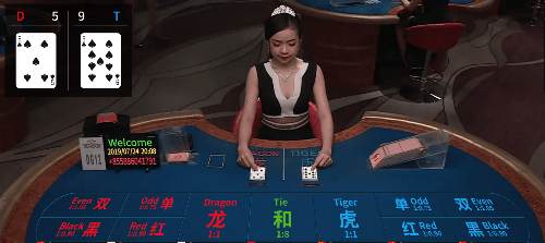 casino dream gaming dragon tiger